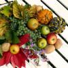 Fruits 818789  480